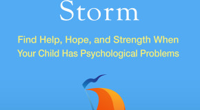 Parenting Through the Storm: A Must for Parenting a Special Needs Child